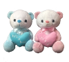 "10"" Boy/girl bear (SKU: EK-850/10H)"