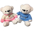 "10"" Boy/girl white bears in sweaters"