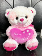 "16"" Valentines white bear/lights/song"