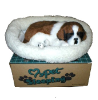 Breathing dog St. Bernard (SKU: D10)