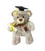 "12"" Grad. 2 tones fabric bear"