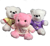 "10"" Mothers day bears in sweaters"