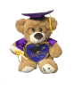"10"" Grad. bear in purple gown/pic frame"